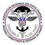 Badge épingle APAC